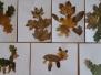 Podzimní skřítci - 1.A
